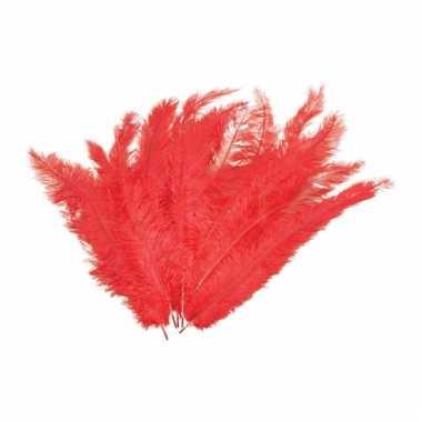 12 grote rode veren