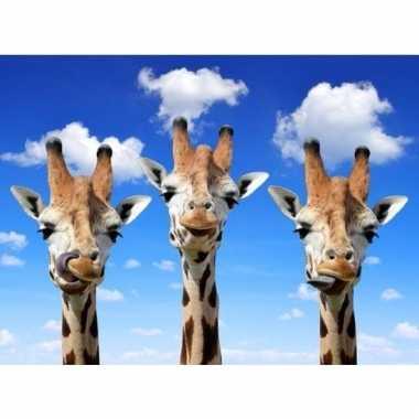 3d magneten giraffes