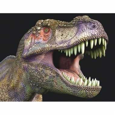3d magneten met t-rex dinosaurus