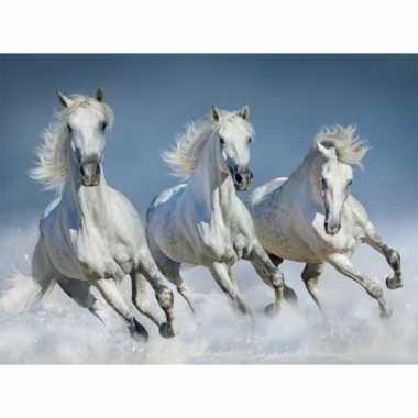 3d magneten met witte paarden