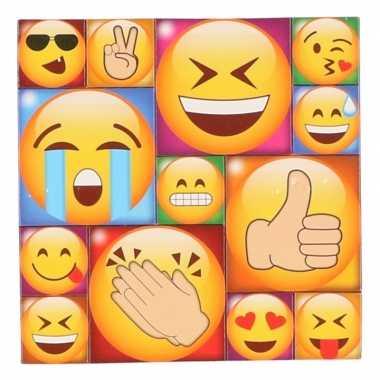 Afgeprijsde 13x koelkast magneten emoji smileys/emoticons type 1