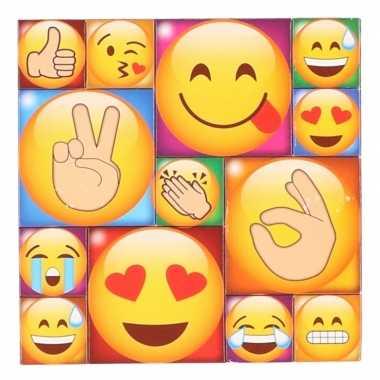 Afgeprijsde 13x koelkast magneten emoji smileys/emoticons type 4