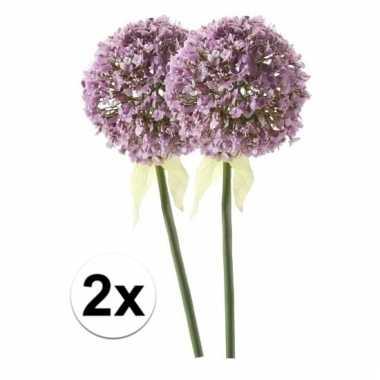 Afgeprijsde 2 x lila sierui 70 cm kunstplant steelbloem