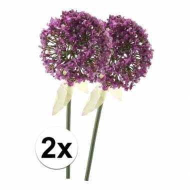 Afgeprijsde 2 x roze/paarse sierui 70 cm kunstplant steelbloem