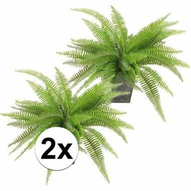 Afgeprijsde 2x groene varen 33 cm in pot kunstplant
