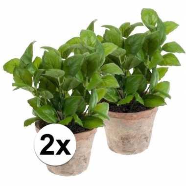 Afgeprijsde 2x nep basilicum kruiden plant groen in oude terracotta p