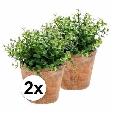 Afgeprijsde 2x nep eucalyptus plant groen in oude terracotta pot kuns