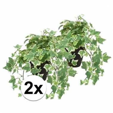 Afgeprijsde 2x nep klimop plant groen/wit in zwarte pot kunstplant