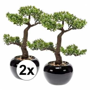 Afgeprijsde 2x nep pilea bonsai boompje 34 cm