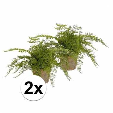 Afgeprijsde 2x nep varen plant groen in terracotta pot kunstplant