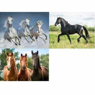 Afgeprijsde 3 stuks3d magneten met paarden