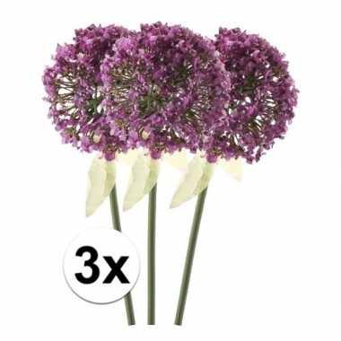 Afgeprijsde 3 x roze/paarse sierui 70 cm kunstplant steelbloem