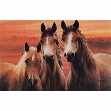 Afgeprijsde 3d dieren placemats paarden type 2