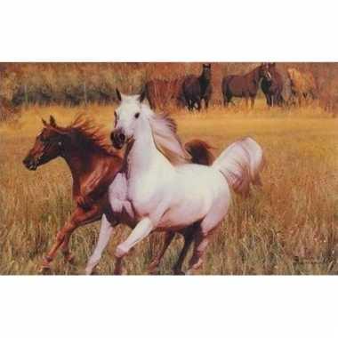 Afgeprijsde 3d dieren placemats paarden type 3