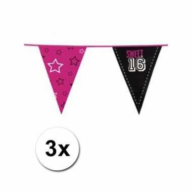 Afgeprijsde 3x zestiende verjaardag sweet 16 vlaggenlijn