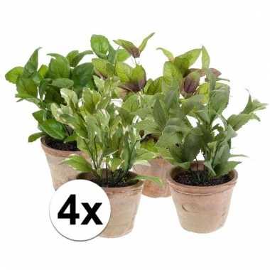 Afgeprijsde 4 nep kruiden planten in oude terracotta potten kunstplan