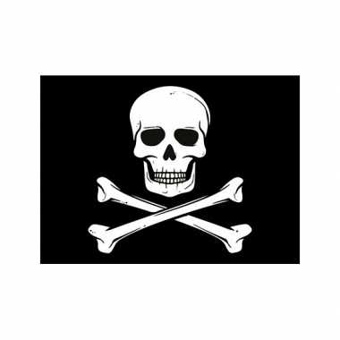 Afgeprijsde piraten thema stickers 7.5 x 10 cm