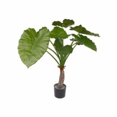 Binnen kunst plant alocasia 80 cm