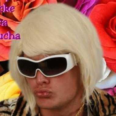 Blonde bobline herenpruik d.j.
