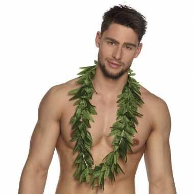 Cannabis hawaiislinger