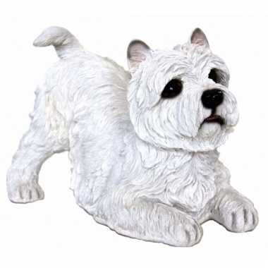Decoratie beeldje witte west highland terrier 36 cm
