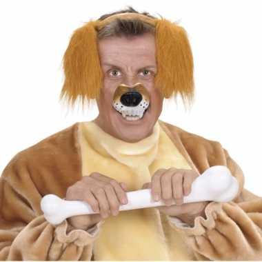Dieren neus hond
