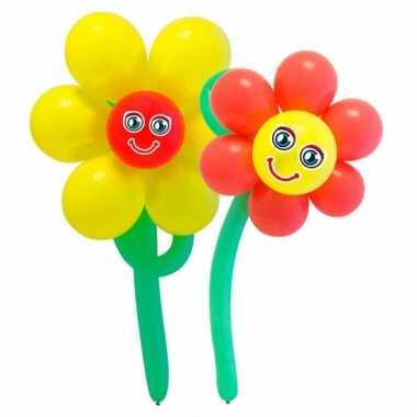 Gekleurde bloemen doe het zelf setje
