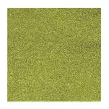 Grasgroen knutsel papier glitter