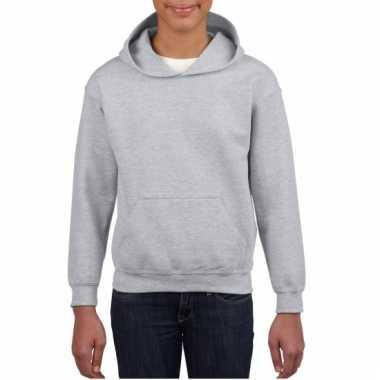 Grijze trui met capuchon voor jongens