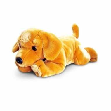 Grote blonde labrador pup 90 cm