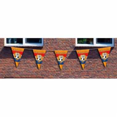 Grote holland vlaggenlijn 10 meter