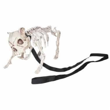 Halloween honden skelet