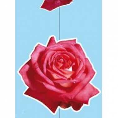 Hang decoratie rozen