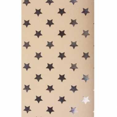 Hobbykarton met zilveren sterren