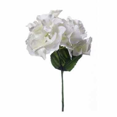 Hortensia nep tak 28 cm wit