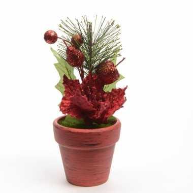 Kerststerren rood fluweel in potje 16 cm