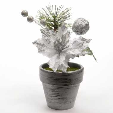 Kerststerren zilver fluweel in potje 16 cm