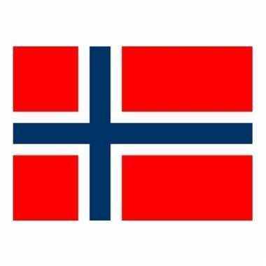Kleine vlag van noorwegen 60 x 90 cm