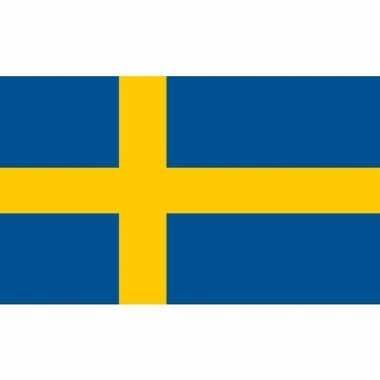 Kleine vlag van zweden 60 x 90 cm