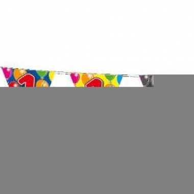 Leeftijd vlaggenlijnen 1 jaar 10 meter