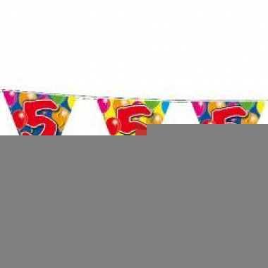 Leeftijd vlaggenlijnen 5 jaar 10 meter