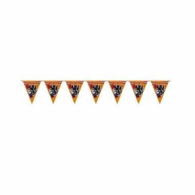 Leeuw vlaggenlijnen oranje 6 meter