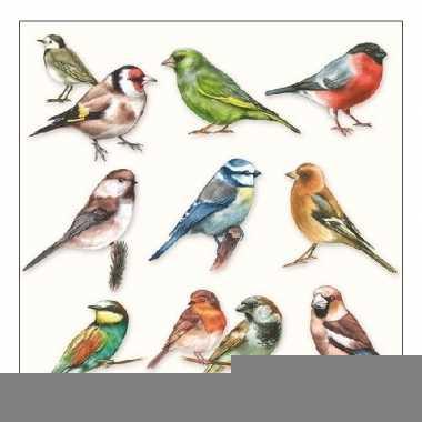 Lunchservetten vogels 3-laags 20 stuks