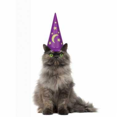 Magier hoed voor katten