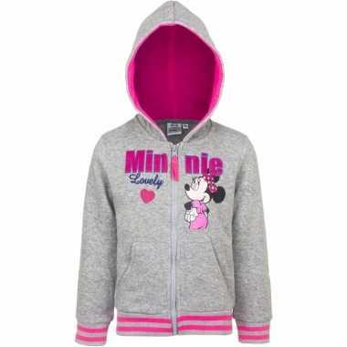 Minnie mouse sweatshirt voor meisjes grijs