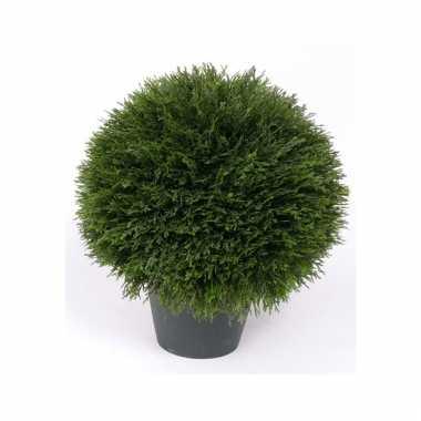 Namaak luxe cypress plant 38 cm