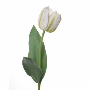 Natural touch tulp wit