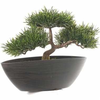 Nep bonsai boompje 26 cm