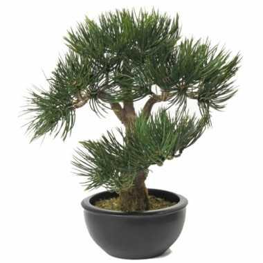 Nep bonsai boompje 33 cm
