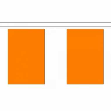Oranje vlaggenlijn 9 m